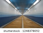 aisle of the seabed | Shutterstock . vector #1248378052
