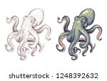 octopus. seafood sea animal... | Shutterstock .eps vector #1248392632