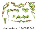jungle vine branches. cartoon... | Shutterstock .eps vector #1248392665