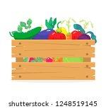 vector illustration of wooden... | Shutterstock .eps vector #1248519145