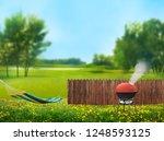 bbq picnic on backyard  | Shutterstock . vector #1248593125