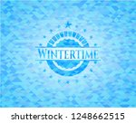 wintertime sky blue emblem with ... | Shutterstock .eps vector #1248662515