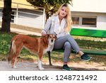 Stock photo beautiful girl with his shetland sheepdog dog sitting and posing in front of camera on wooden bench 1248721492