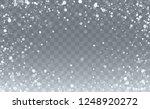 vector snow background. happy... | Shutterstock .eps vector #1248920272