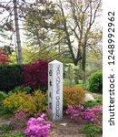 obelisk shaped stone sign... | Shutterstock . vector #1248992962