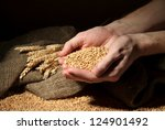 Man Hands With Grain  On Brown...