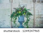 stone vase planter with fustian ... | Shutterstock . vector #1249247965