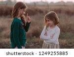 the conflict between siblings.... | Shutterstock . vector #1249255885