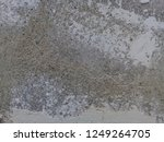 texture of old dirty for... | Shutterstock . vector #1249264705