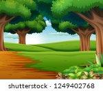 cartoon of the forest scene... | Shutterstock . vector #1249402768