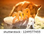 wooden number 2019. happy new... | Shutterstock . vector #1249577455