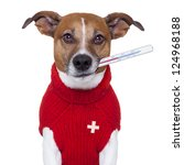 Stock photo sick ill cold dog with fever 124968188