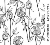 rose and peony bud seamless... | Shutterstock . vector #1249797958