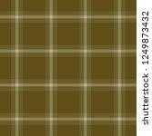 tartan traditional checkered...   Shutterstock . vector #1249873432