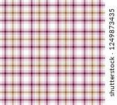 tartan traditional checkered...   Shutterstock . vector #1249873435