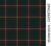 tartan traditional checkered...   Shutterstock . vector #1249873465