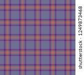 tartan traditional checkered...   Shutterstock . vector #1249873468