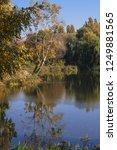 beautiful autumn landscape in a ... | Shutterstock . vector #1249881565