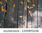 seaside wooden walkway wooden... | Shutterstock . vector #1249893238