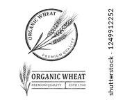 wheat vintage logo | Shutterstock .eps vector #1249912252