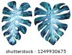 tropical leaves set. jungle... | Shutterstock . vector #1249930675