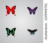 set of moth realistic symbols... | Shutterstock .eps vector #1249949752