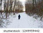 little boy lost in the woods | Shutterstock . vector #1249959442