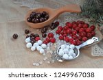 cranberries with sugar and... | Shutterstock . vector #1249967038