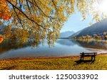 beautiful lake view in autumn ... | Shutterstock . vector #1250033902