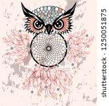 Dreamcatcher With Owl....