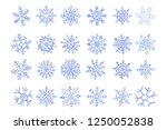 set of vector ice snowflakes... | Shutterstock .eps vector #1250052838