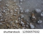 bubbles under the ice water | Shutterstock . vector #1250057032