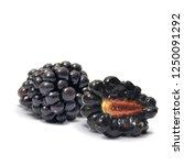 fresh  sweet and tasty... | Shutterstock .eps vector #1250091292