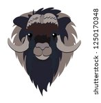 animal head illustration on... | Shutterstock .eps vector #1250170348