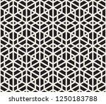 vector seamless pattern. modern ... | Shutterstock .eps vector #1250183788