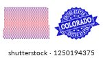 geographic collage of dotted... | Shutterstock .eps vector #1250194375