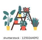 set of decorative houseplants... | Shutterstock .eps vector #1250264092