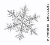 snowflake isolated on white... | Shutterstock .eps vector #1250282368