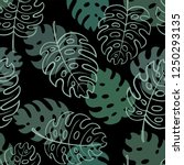 beautiful seamless doodle... | Shutterstock .eps vector #1250293135