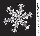 white snowflake isolated on... | Shutterstock .eps vector #1250294875