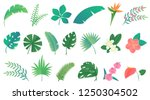 vector set of cartoon tropical... | Shutterstock .eps vector #1250304502