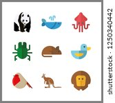 9 wildlife icon. vector... | Shutterstock .eps vector #1250340442
