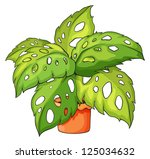 illustration of a plant and a... | Shutterstock . vector #125034632