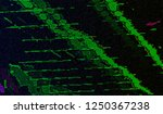abstract glitch digital color... | Shutterstock .eps vector #1250367238