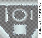 ice crack template set on gray...   Shutterstock .eps vector #1250638225