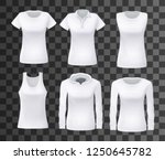 shirts or tops for women... | Shutterstock .eps vector #1250645782