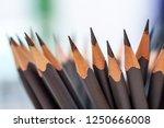 sharp grey pencils on white...   Shutterstock . vector #1250666008