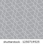 vector seamless pattern.... | Shutterstock .eps vector #1250719525
