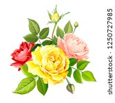 beautiful bouquet flowers of... | Shutterstock .eps vector #1250727985
