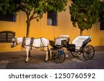 traditional horse and carriage... | Shutterstock . vector #1250760592
